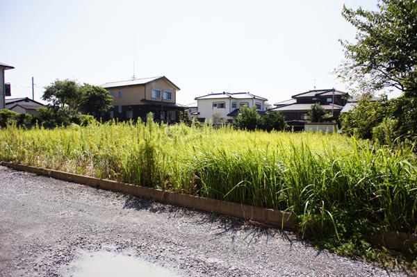 現在、農地のため農地転用が必要です。